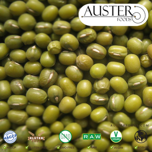 Bulk Mung Bean (Exported from the USA. Pallet orders delivered internationally)