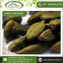 Purchase Savoury Cardamom from Reputed Industry Supplier