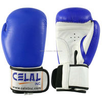 Boxing Helmet and Gloves