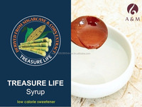 Treasure Life Low Calorie Syrup (Expected Mar2016)