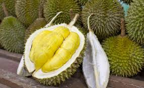 Fresh / Dried Durian Fruits for sale !!.