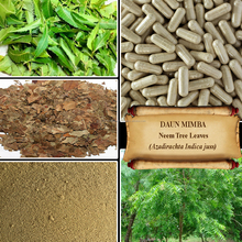 [ORGANIC] NEEM LEAF / Azadirachta Indica / Indian Lilac / Margosa Tree / Fresh Powder, Extract, Capsules, Liquid, Oil