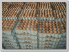 /product-detail/high-fresh-table-eggs-brown-and-white-40g-50g-60g-65g-70g-for-sales-best-price-50029142962.html
