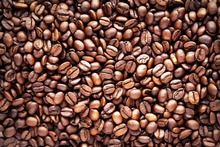 VIETNAM ROBUSTA COFFEE BEANS THE MOST COMPETITIVE PRICE ( SKYPE: Hannah.vietgo)