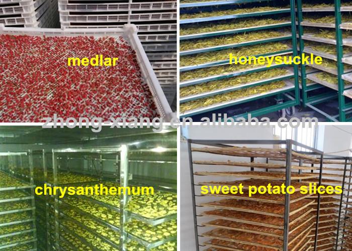 Zhongxiang vermelho datas máquina de secagem