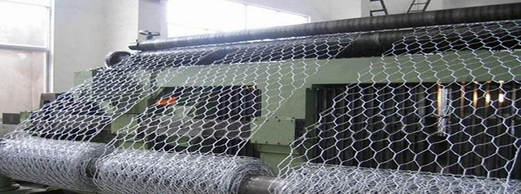 Black Vinyl Coated Poultry Netting Hexagonal Wire Netting