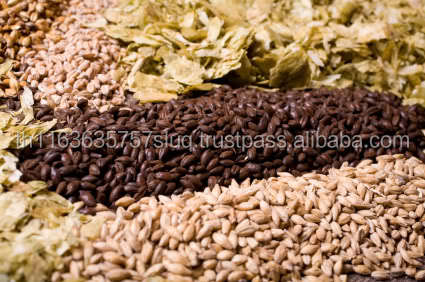 Barley for malt / Barley feed