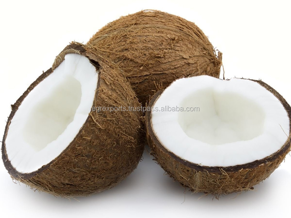 Matured Fully Husked Coconut at lowest Price