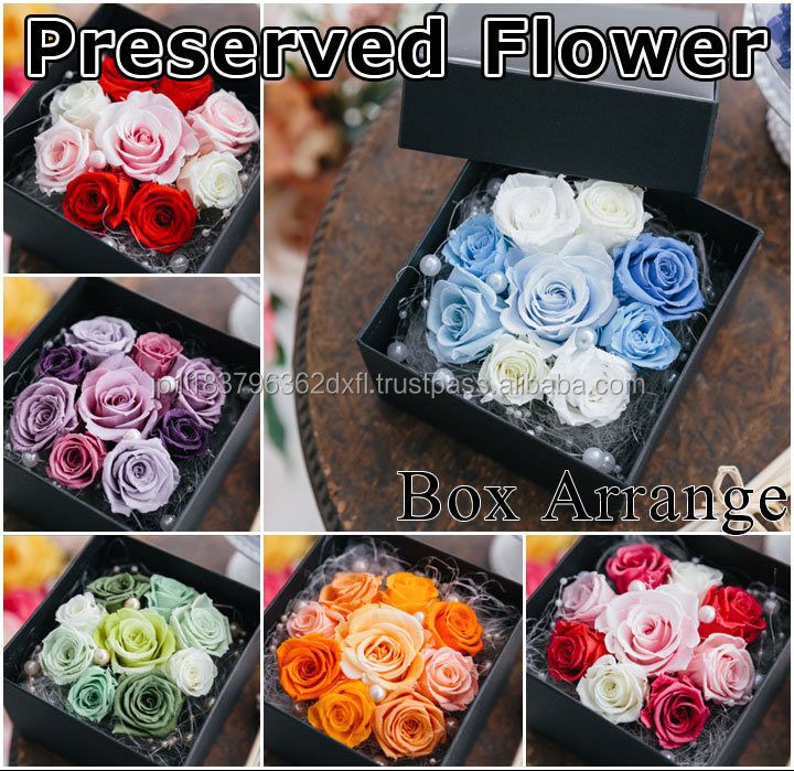 Popular and Premium wholesale preserved flower with Original made in Japan