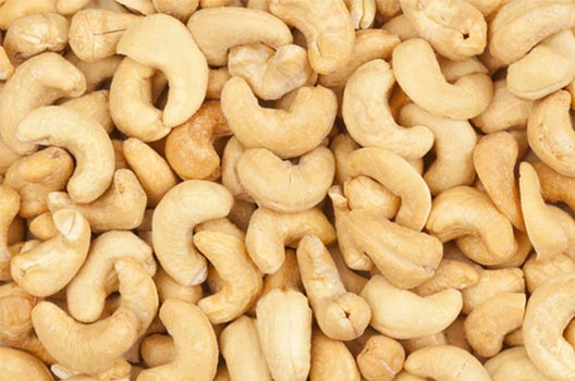 Cashew Nuts/Kennel W-180-240-320-450