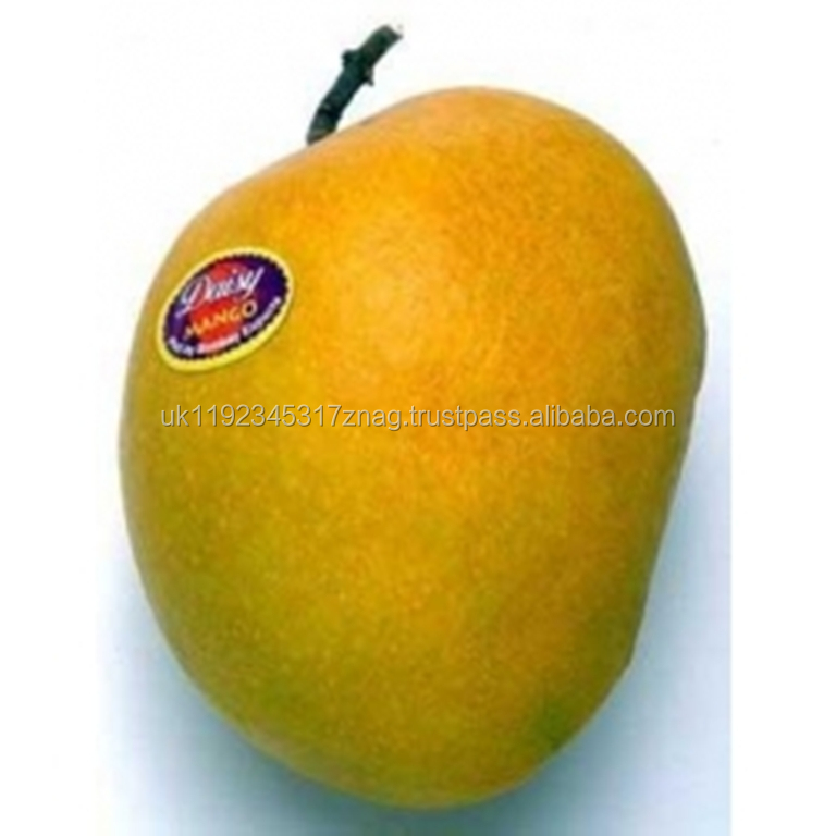 For sale hot sale fresh natural fruit class 1 mango