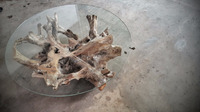 Coffee Table Teak Root with Tempered Glass