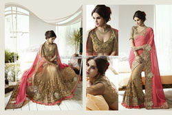 Heavy Embroidery Saree Georgette pallu+net skirt with sartin gota blouse