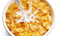 High capacity Corn flakes/Breakfast cereals Plant