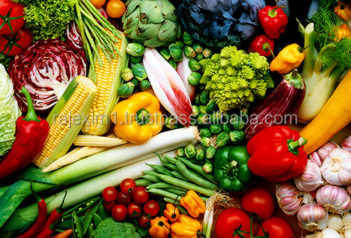 Fresh Vegetables Suppliers from India