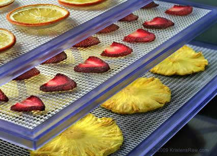 High Quality Dehydrated Fruits From Brazil