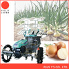 Onion seedling planter with plastic pot seedling Made in Japan