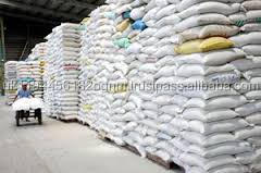 Basmati Rice 2kg 5kg 10kg 20kg 25kg 50kg Cheap Price Export India Rice