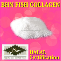 Halal food product hydrolyzed fish collagen with no specific smell