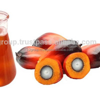 Crude Palm Oil CPO