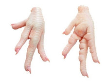 Halal Grade A Chicken Feet / Frozen Chicken Paws Brazil and Poland