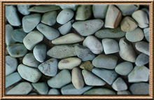 PEBBLE KUPANG HIJAU / GREEN KUPANG