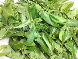 Pure Neem Oil Pesticides