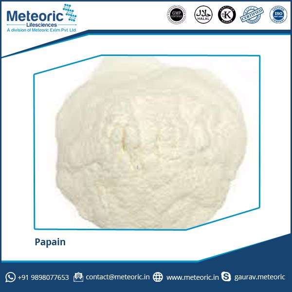 2017 Top Grade Quality Papain Enzyme for Preparation of Medicines at Best Cost