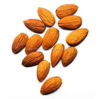 Best Quality Organic Almonds Best Price