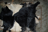 /product-detail/raw-hide-goat-skins-50029776313.html