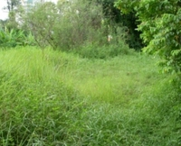 Taman Perling 5 Acre Mix Johor Land for Sale