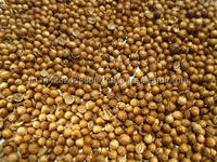 High Quality Coriander Seeds / Split Coriander Seed