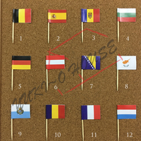 Multi Countries Party Celebration Toothpick Flag With High Quality Printed Paper