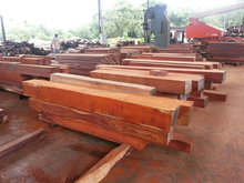 European and African hard wood, logs for sale, good price