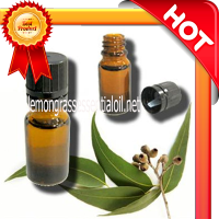 Provide lemongrass oil price used hair care