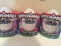 Hatchimals - Hatching Egg - Interactive Creature - Penguala by Spin Master