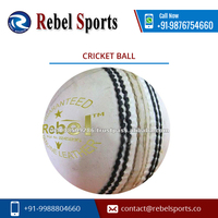 Leather International Cricket Ball Price