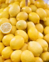 Lemons Supplier in Bulk