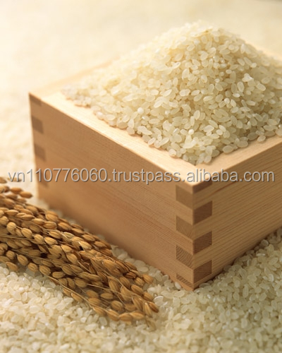 VIETNAM FRAGRANT JAPONICA RICE 5% BROKEN