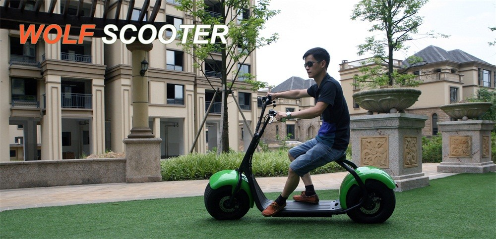 High Speed off road 1000w wolf scooter safe battery Electric scooter
