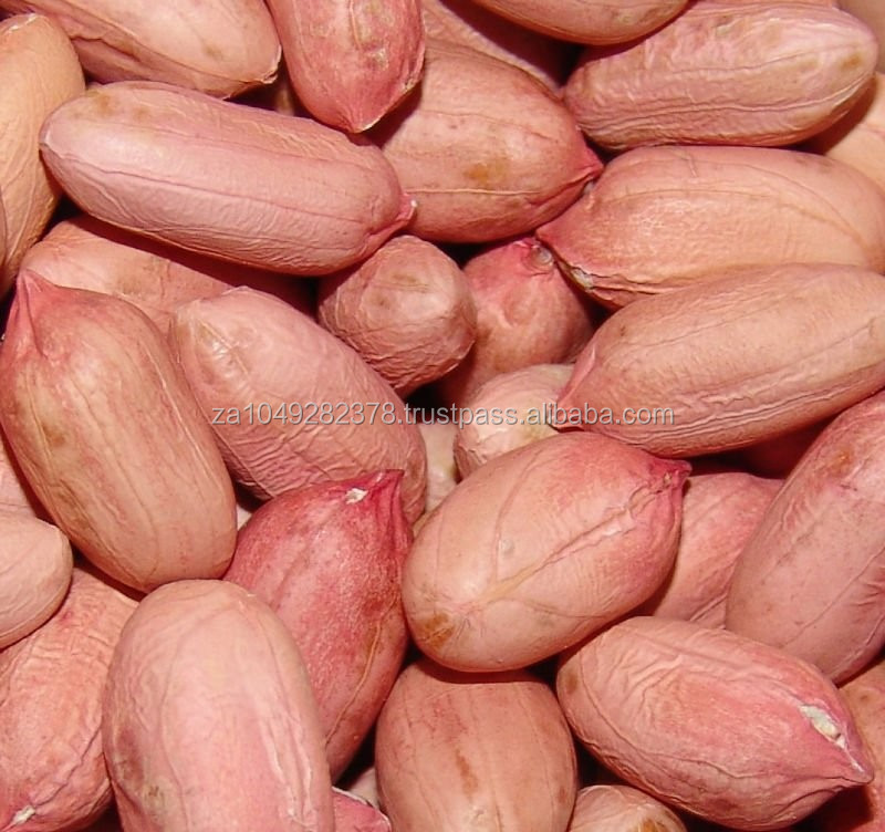 peanut kernels for sale