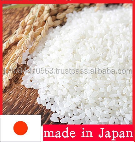 popular Japanese white rice suitable for rice buyers