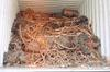 COPPER WIRE SCRAP/Copper Scrap, Copper Wire Scrap, Mill Berry Copper 99.9%
