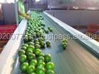 Quality Products:leomon Seedless