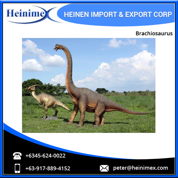 Outdoor Playground Dinosaur Model of Brachiosaurus