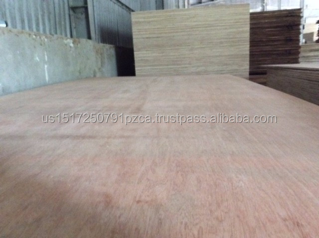 Vietnam origin moisture 8 -14% 9mm birch face/back packing plywood