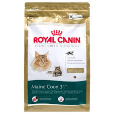 Royal Canin Maine Coon 31 Dry Cats Food