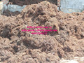 DRIED SARGASSUM SEAWEED / BROWN SEAWEED/ ALGAE POWDER TYPE ANIMAL FEED/ FERTILIZERS