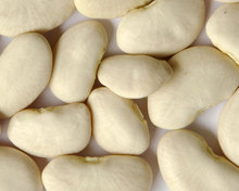 Quality Butter Beans for Sale