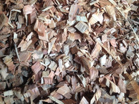Eucalyptus Wood Chip